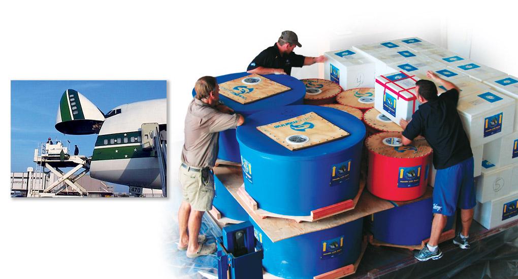 Freight Benefits