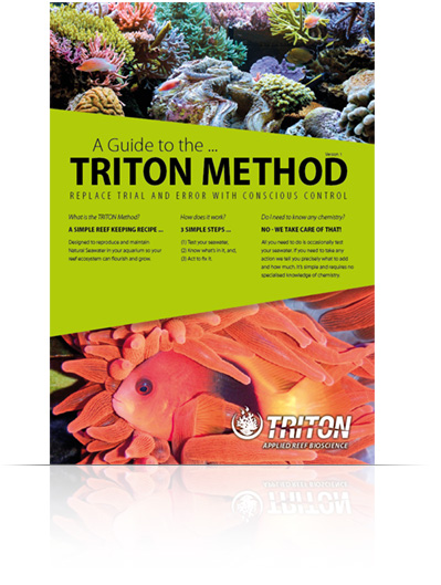 Guide to the TRITON Method
